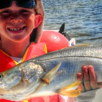 Anna Maria Island Fishing Report: Captain Aaron Lowman-04-28-2014