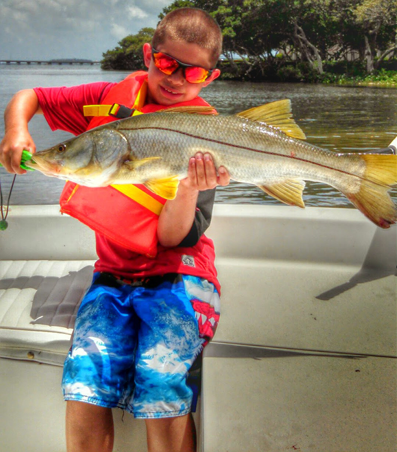 Snook10 captain aaron lowman for Anna maria island fishing report