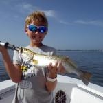 anna maria island trout