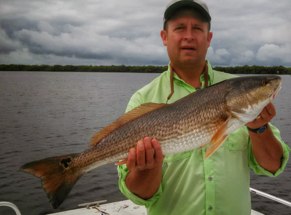 Redfish 3 captain aaron lowman for Anna maria island fishing