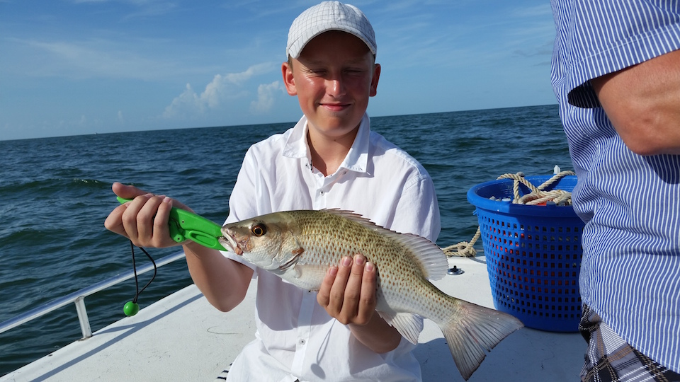 Anna maria island fishing report july 24 2015 captain for Anna maria island fishing