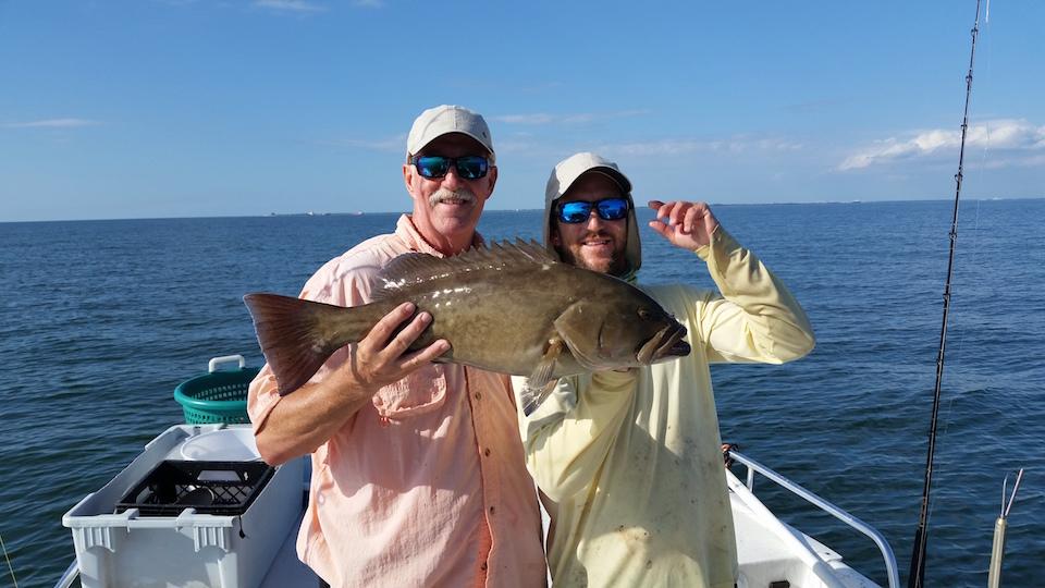 Tampa bay fishing report november 2014 for Tampa bay fishing reports