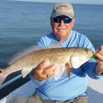 anna maria island redfishing
