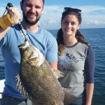big tripletail