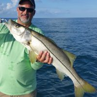 Anna Maria Island Fishing Report-July 2018