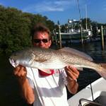 anna maria island redfish