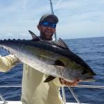 anna maria island blackfin tuna