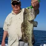 anna maria island inshore gag grouper
