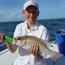Anna Maria Island Fishing Report – July 24, 2015 – Captain Aaron Lowman