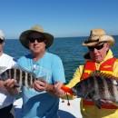 Anna Maria Island Fishing Charter – February 14, 2016