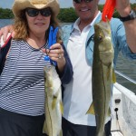 anna maria snook fishing guide