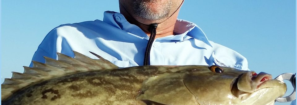 Anna Maria Fishing Charters in July