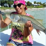 Early Morning Snook