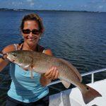 redfish3