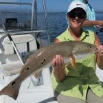 Anna Maria Redfish