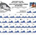 Anna Maria Island, FL Tide Chart June, 2018