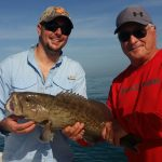tampa bay grouper