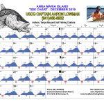 December 2019 Tide Chart For Anna Maria Island