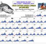 Anna Maria Island, FL Tide Chart February 2019