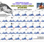 December 2020 Tide Chart for Anna Maria Island, Florida