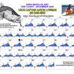 December 2020 Tide Chart for Anna Maria Island, Florida