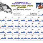 February 2020 Tide Chart for Anna Maria Island, Florida