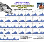 June 2020 Tide Chart for Anna Maria Island, Florida
