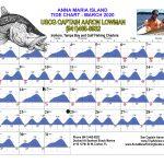 March 2020 Tide Chart for Anna Maria Island, Florida